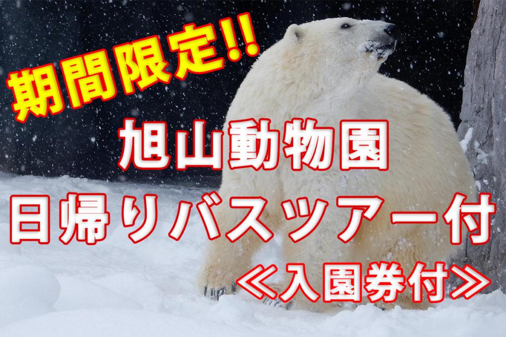★旭山動物園日帰りバス(入園券付)