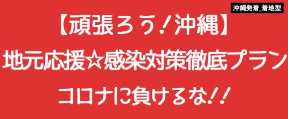 ★着地型★地元応援!感染対策徹底プラン【沖縄応援★コロナに負けるな!】