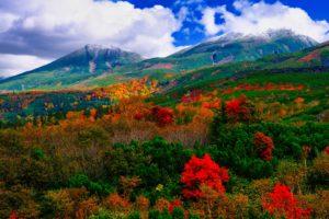 【北海道】日本一早い紅葉スポット~大雪山国立公園~