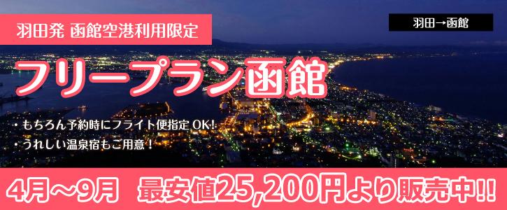 函館・湯の川温泉へ行く格安旅行-函館空港利用限定-