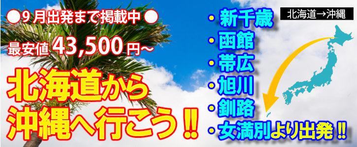 北海道発☆往復共に北海道6空港JALより自由に選べるフリープラン